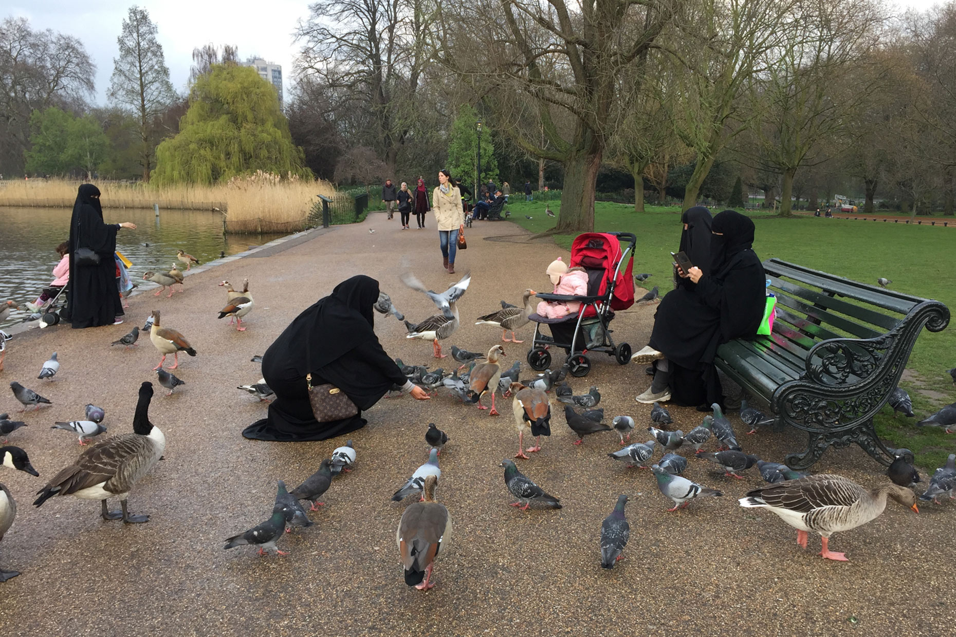 Hyde-Park-London-England-Travel-Photography-Caryn-B-Davis
